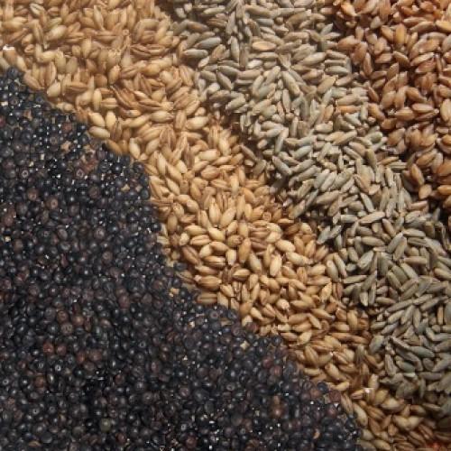 BIOLAND Linsen und Back-Getreide verfügbar Sept 17