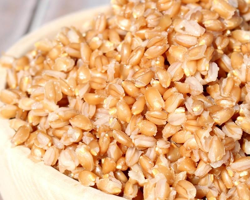 Gekochtes Getreide/Getreidereis