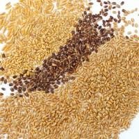 Knaufs Probierpaket reine Weizen Mischung